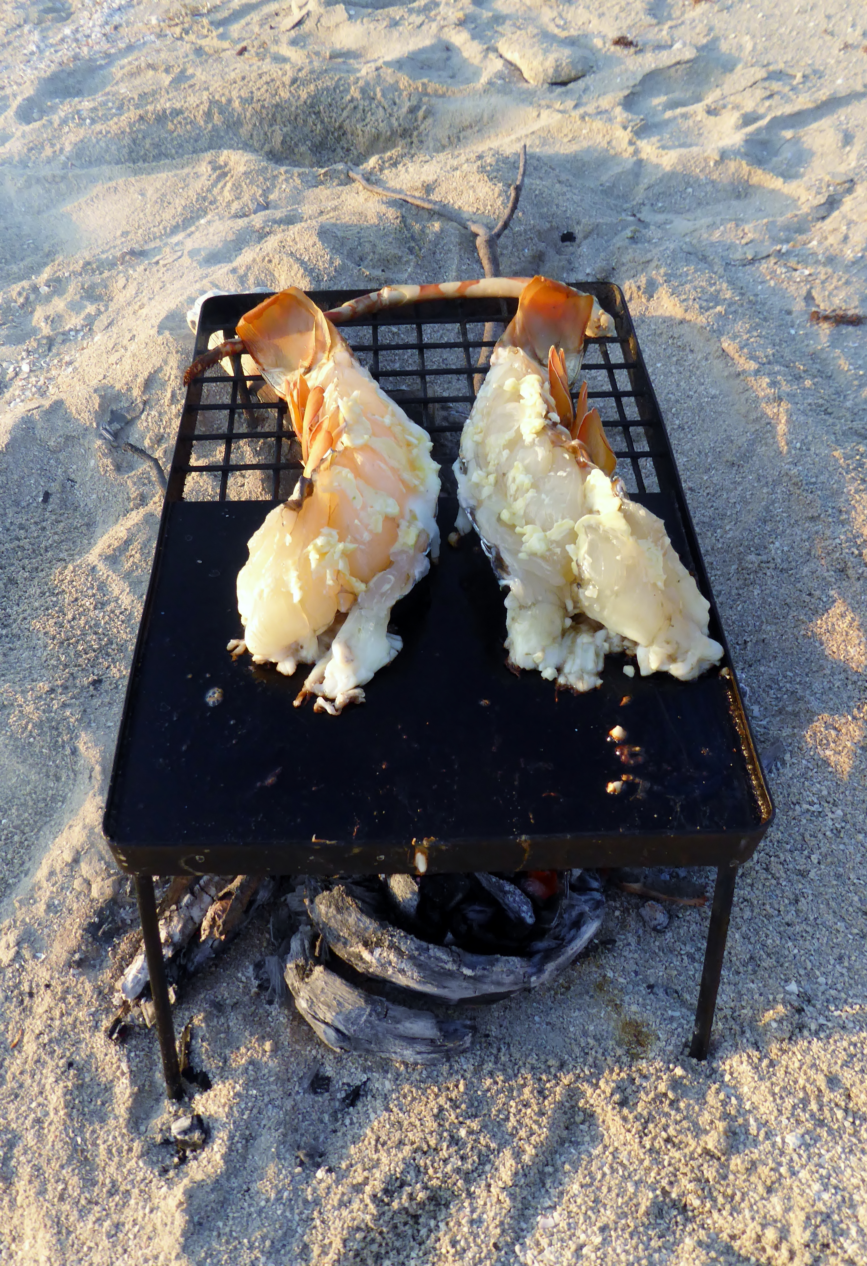 barbecue crayfish over a fire on the beach
