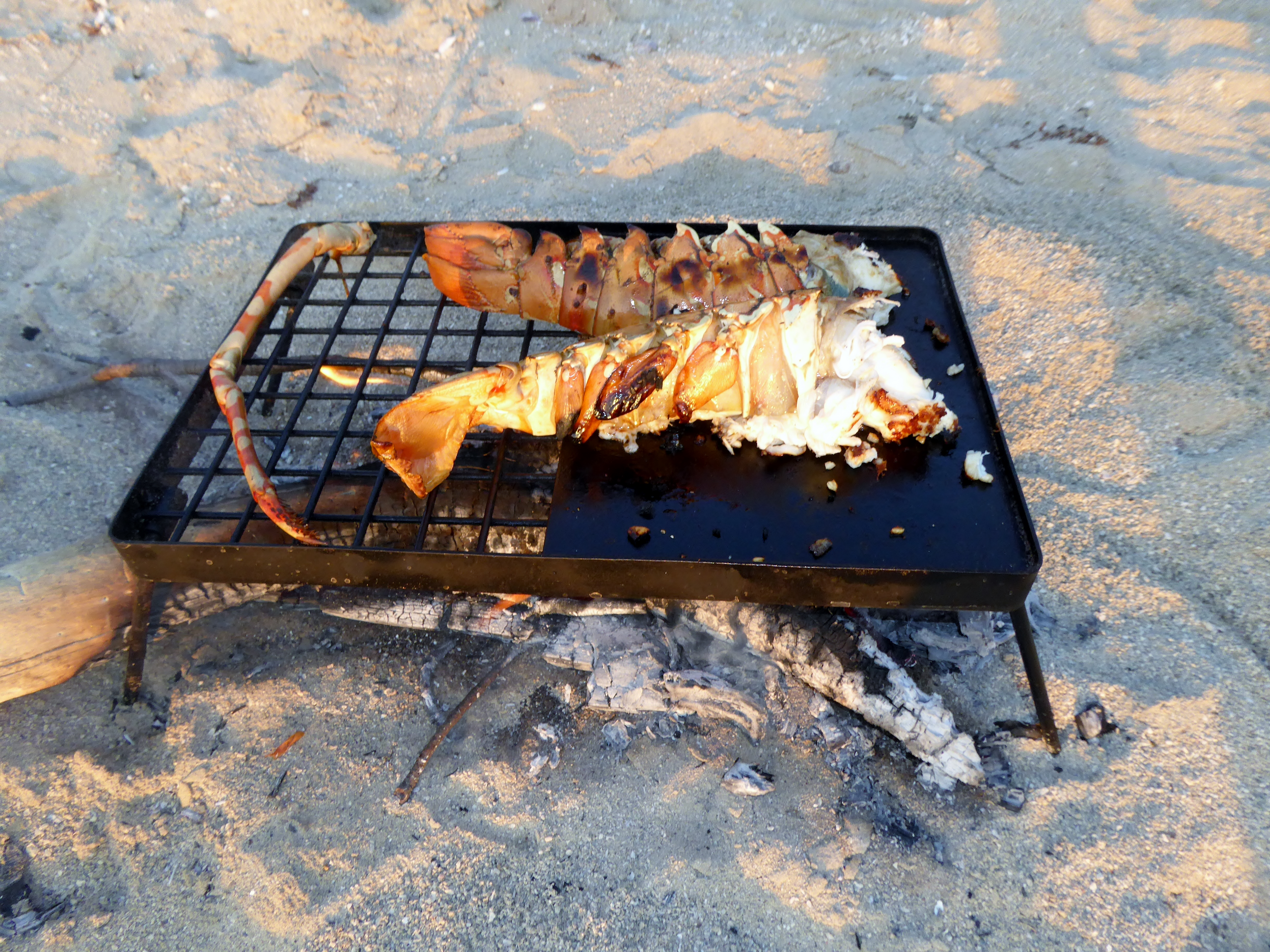 Char grill crayfish tails over a fire on the beach