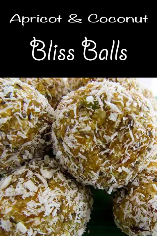Apricot and Coconut Bliss Balls with chia seed, oats and apricot